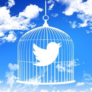Twitter en cage